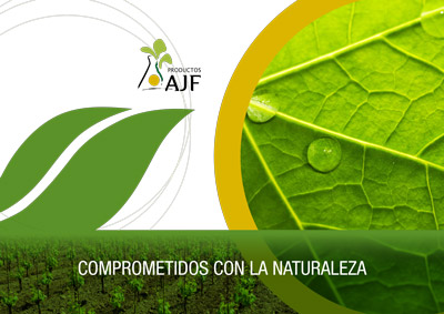 Catalogs - Productos AJF