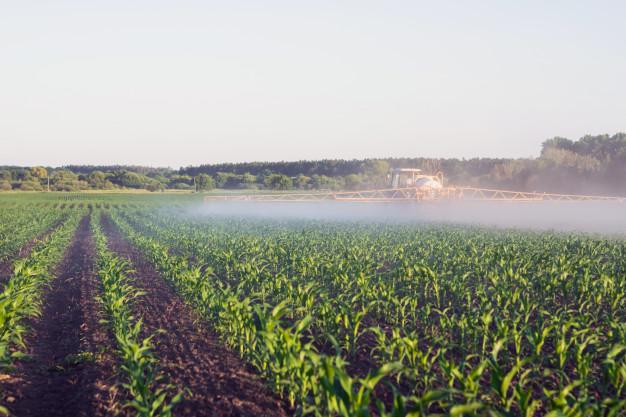 Herbicidas para cultivos de primavera